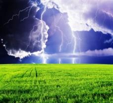 电闪雷鸣下的茫茫绿野图片
