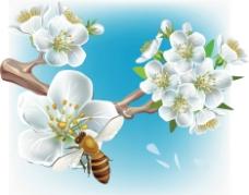梦幻花纹花朵 花枝 蜜蜂图片