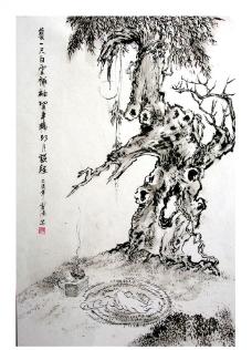 菩提树下图片