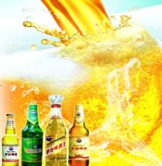 茅台啤酒图片