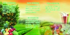 水果的营养价值展板图片