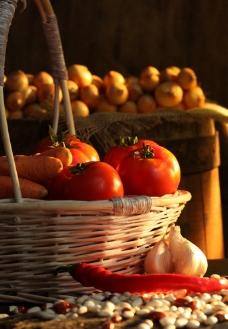 西红柿 胡萝卜 辣椒 洋葱图片