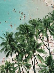 海滩鸟瞰图图片