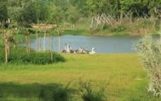 艾溪湖湿地公园图片