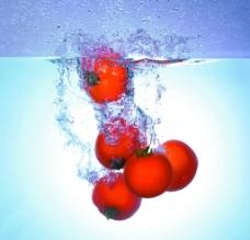 水中的西红柿图片