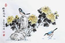 菊花 麻雀 图 邱德镜图片