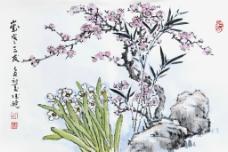 梅花 水仙花图片