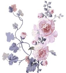 手绘彩色花卉图片