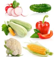 各种蔬菜图片