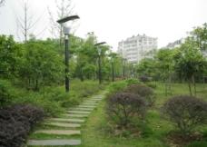 公园小道图片