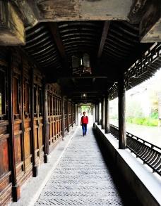 乌镇风景图片