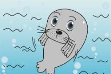 小海豹图片