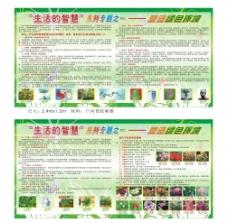 营造绿色环境宣传栏图片