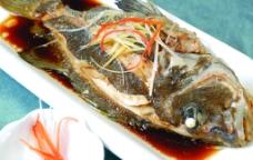 包公鱼图片