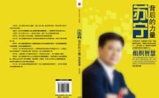 苏宁背后的力量封面图片