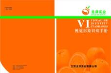 龙津实业有限公司VI手册封面图片
