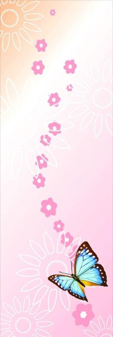 蝴蝶太阳花图片
