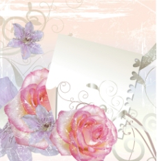 粉红色的玫瑰图片