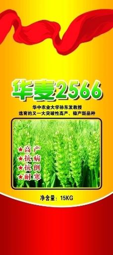 小麦种包装图片