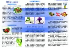 科学饮食三折页内页图片