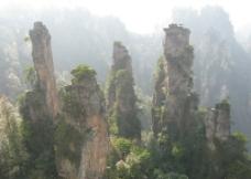 张家界石林图片