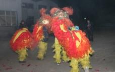 舞龙 舞狮 节日气氛图片