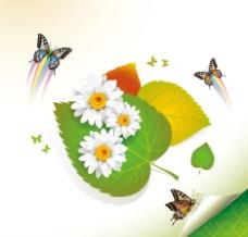 浪漫花紋 綠葉 花朵 蝴蝶圖片