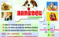 宠物医院DM海报图片
