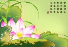 中国画 荷花 荷叶图片
