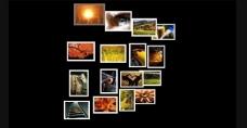 js超酷3d照片展示效果图片
