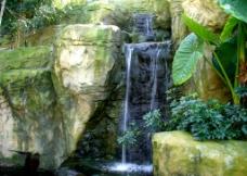 小瀑布图片